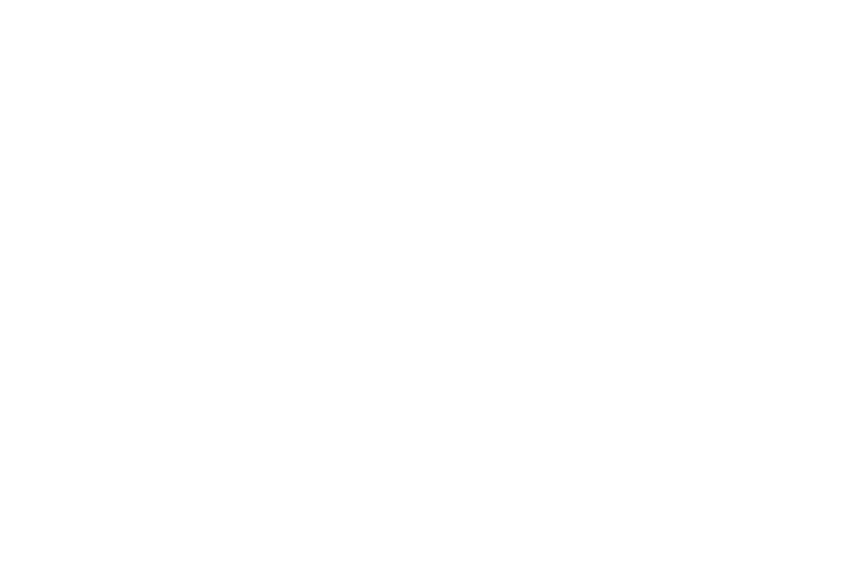 2k-logo-white