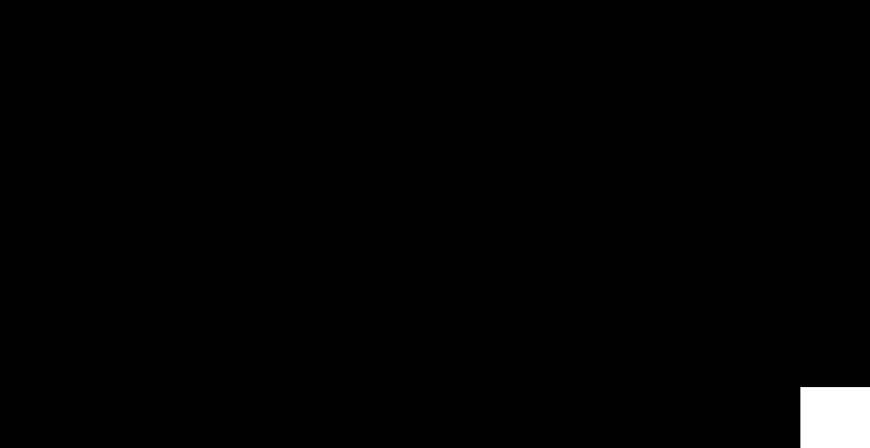 denizen-logo