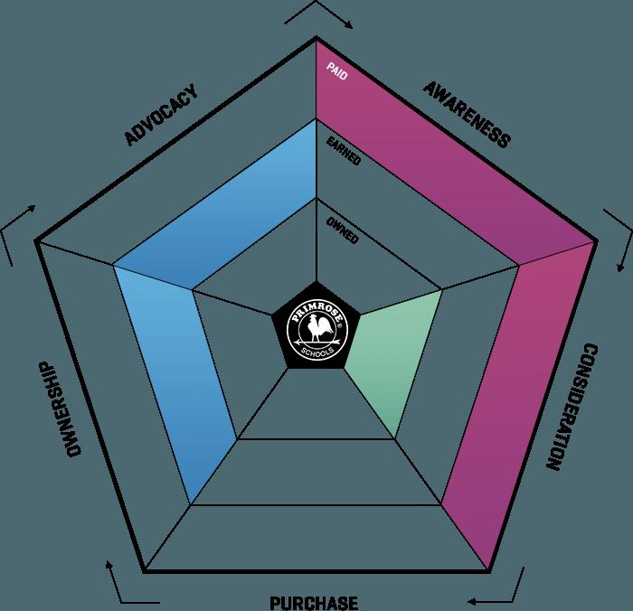 ampagency_work_primrose_ecosystem