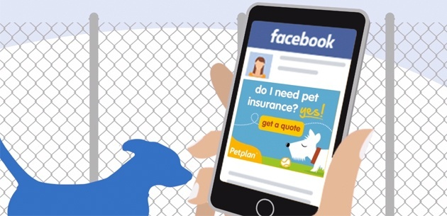 expertise_programmatic_pet-insurance_02