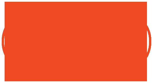 tyson-logo--red