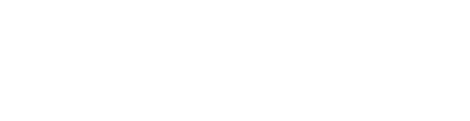 Seattle stylistic text